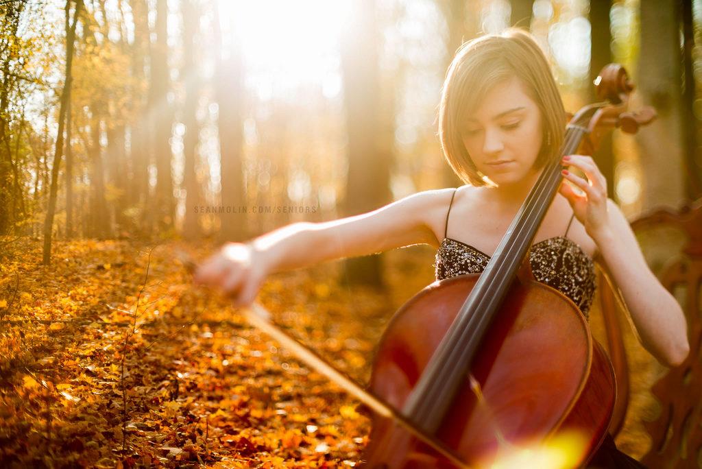 Professional cello for sale