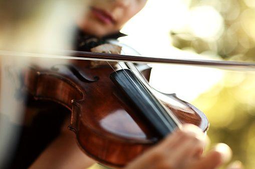 best viola