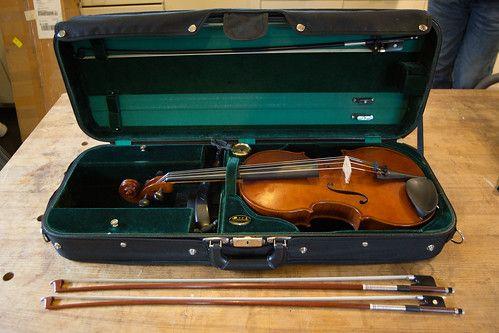 Professional Viola Case