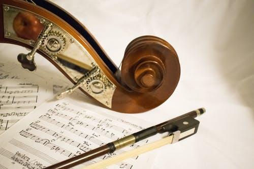 Viola Notes