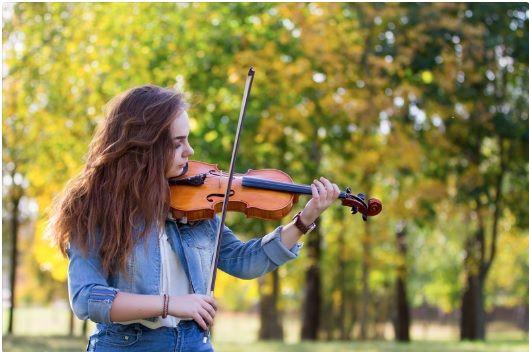 viola instrument price