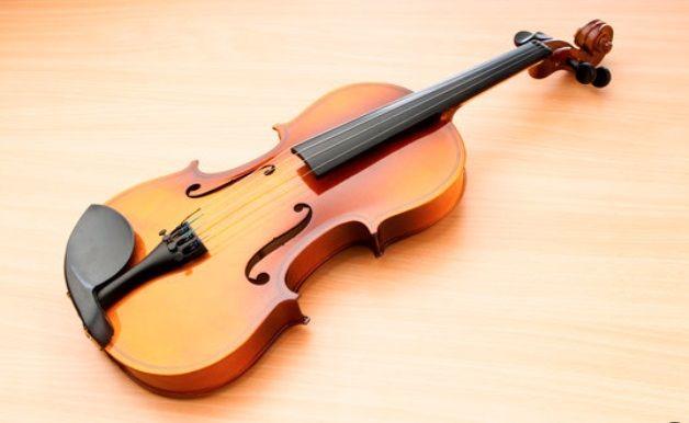 viola instrument for sale